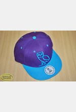 Baseball Cap Purple / Blue