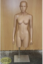 Female 3/4 Torso on Stand